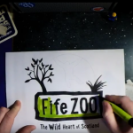 twohundredby200 - Fife Zoo logo design