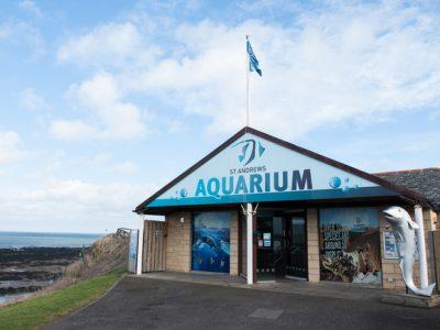 St Andrews Aquarium - February 2015