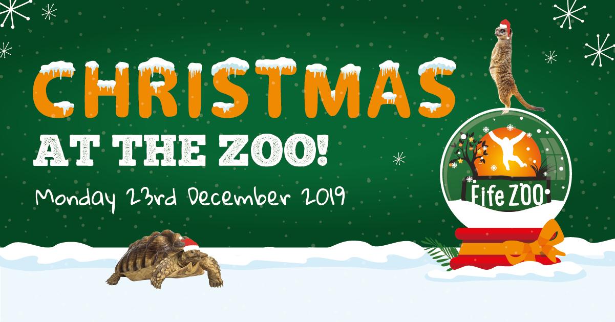 fife_zoo_christmas_2019_fb1
